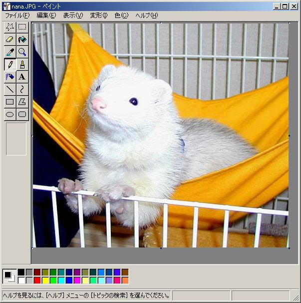 写真のファイルサイズの縮小方法